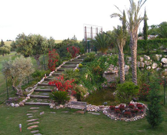 Jerez Monte Castillo